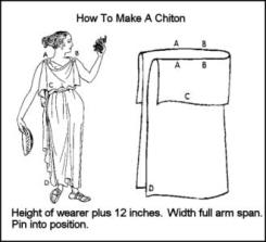chiton300